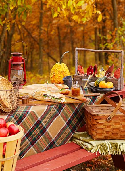 in pack romantic picnic What a basket to