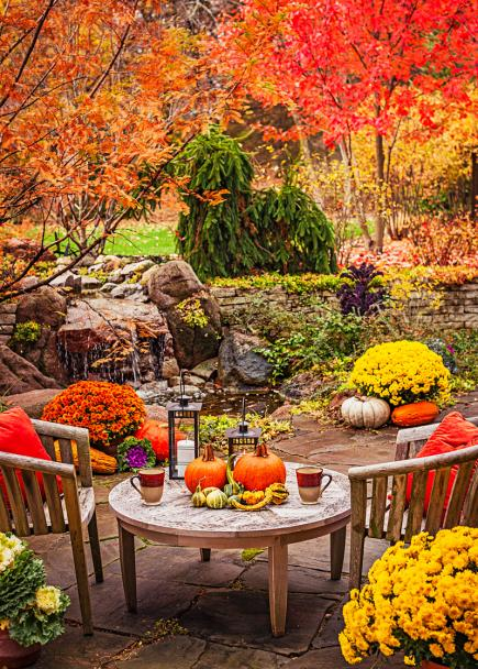 Outdoor fall decorating with mums midwest living fall backyard with mums in containers mightylinksfo