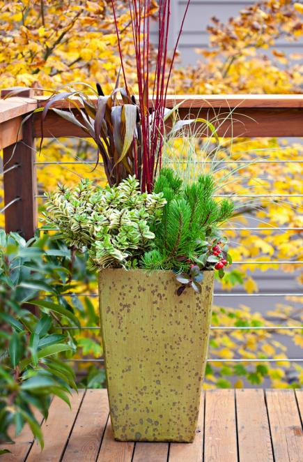 Easy transition & Fresh Fall Container Gardens | Midwest Living