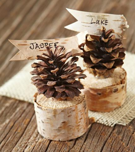 Pinecone place cards & Pinecone Crafts and Decorations Youu0027ll Want to Try   Midwest Living