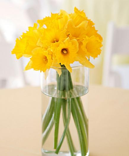 spring showers bouquet daffodils-#27