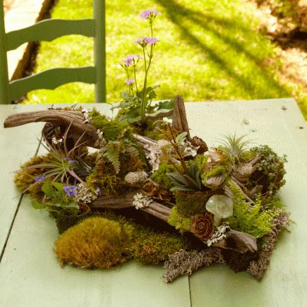 DIY tabletop woodland garden