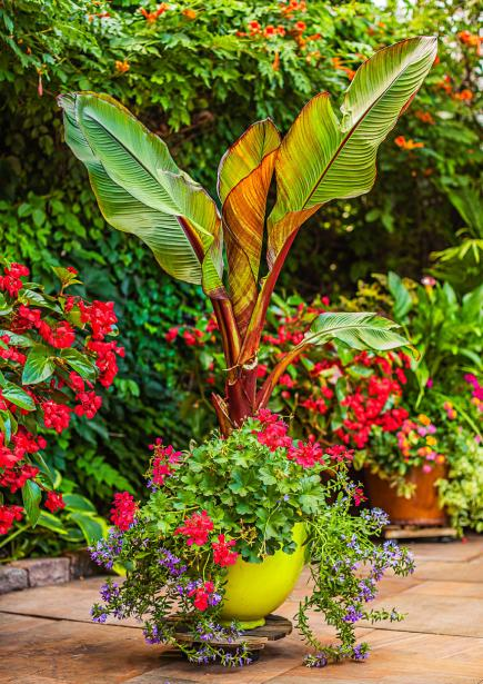 Pot Garden Ideas big container patio garden ideas 35 Beautiful Container Gardens