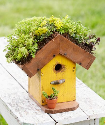 How To Make A Living Roof Birdhouse Midwest Living