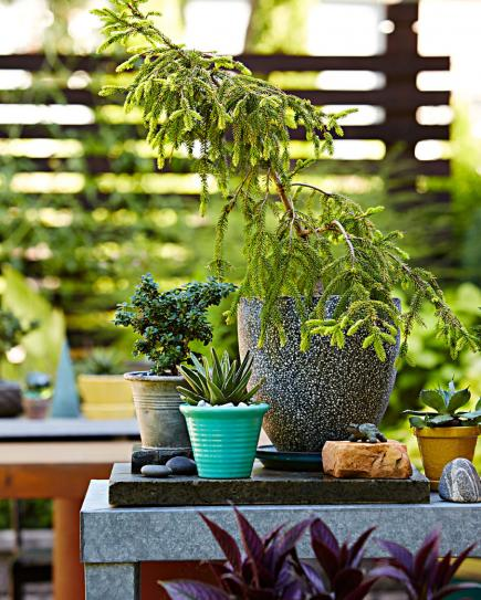30 inspiradoras pequeñas ideas de jardín balcón