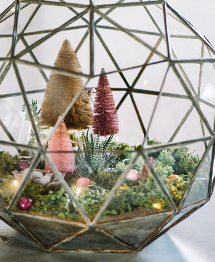 Holiday terrarium