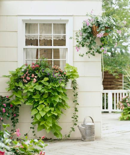 30 bright and beautiful window box planters midwest living for Window garden