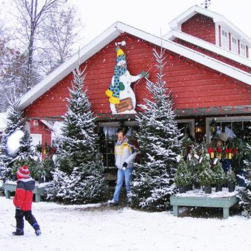 Hensler Nursery Inc. - 8 Christmas Tree Farms We Love Midwest Living