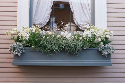 1000 images about window boxes and baskets on pinterest window boxes geraniums and red geraniums - English style window boxes living facades ...