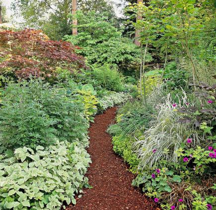 9 ways to create a garden path midwest living for Garden path