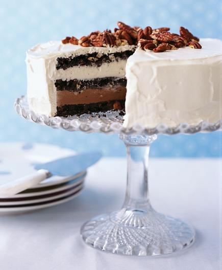 Triple-Chocolate Ice Cream Cake