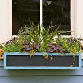 Chalkboard window box