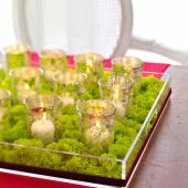 Christmas centerpiece ideas: moss and candles