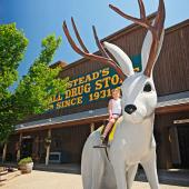 Things to Do in South Dakota's Black Hills and Badlands--Wall