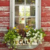 DIY street-sign window box