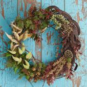 Seedpod wreath