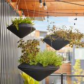 Resin hanging baskets