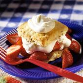 Singular Strawberry Shortcake