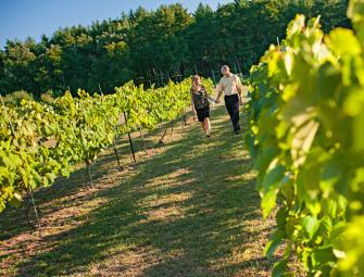 Fawn Creek Winery, about 10 minutes north of Wisconsin Dells, doesn't have formal tours, but you're welcome to stroll the 7 acres of vineyards.
