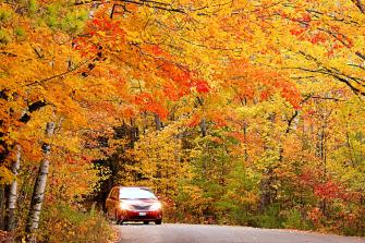 Fall foliage near Sturgeon Bay.