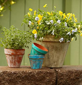3 DIY Ways To Age Garden Pots | Midwest Living
