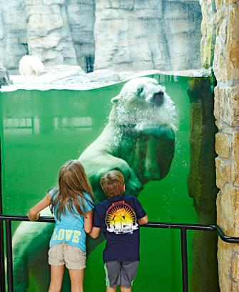 Kansas City Zoo. Photo courtesy of Kansas City Convention and Visitors Bureau.