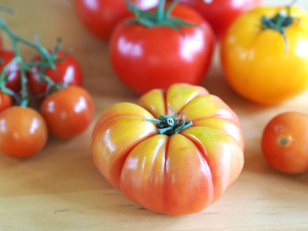 Nicole Marie S Daily Living How To Grow Tasty Tomatoes