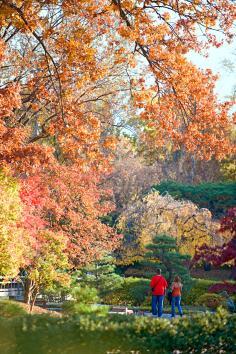 Missouri Botanical Garden.