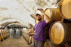 Historical wine cellars.