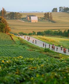RAGBRAI riders biking through a field.