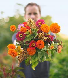 Red, pink and yellow zinnias, with marigold 'Giant Orange', and plumed and crested celosia.