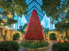 More than 5,000 poinsettias in a variety of shapes and colors deck the halls of the Lauritzen Gardens. Model trains whir through the exhibit, around a 20-foot poinsettia tree and past mini replicas of area landmarks.