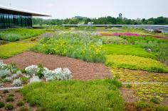 Chicago Botanic Garden green roof