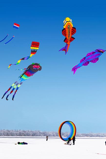 Color the Wind Kite Festival