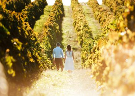 Chaumette Vineyards