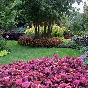Ohio Cincinnati Zoo And Botanical Garden